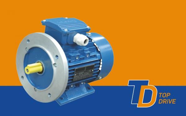 0,55 kW - 3000 U/min - B35 - Drehstrom-Norm-Motor